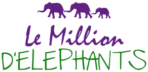 Le Million d'Eléphants